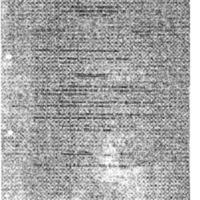 http://www.clintonlibrary.gov/assets/storage/Research-Digital-Library/holocaust/Holocaust-Gold-Series/Box-33/902534-master-set-folder-23-210418-210476-4.pdf