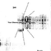 http://www.clintonlibrary.gov/assets/storage/Research-Digital-Library/hctf/20060885F2/Box-1/42-t-12091515-20060885F-Seg2-001-019-2015.pdf
