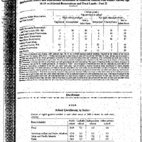 http://www.clintonlibrary.gov/assets/storage/Research-Digital-Library/dpc/rotherham/education/Box-004/2011-0103-Sa-statistical-record-of-native-north-americans-report.pdf