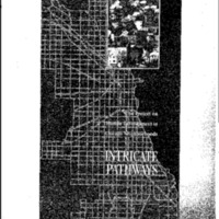 Intricate Pathways, Project on Human Development in Chicago Neighborhoods [Booklet]