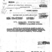 http://www.clintonlibrary.gov/assets/storage/Research-Digital-Library/holocaust/Holocaust-Gold-Series/Box-34/902534-master-set-folder-24-210637-210803-2.pdf