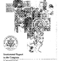 http://clintonlibrary.gov/assets/storage/Research-Digital-Library/clinton-admin-history-project/31-40/Box-35/1497349-department-of-labor-publications-7.pdf