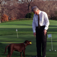 Putting Green with Buddy the Dog